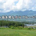 長野◆富士見町/今なら間に合う!ブルーベリー摘みに来ませんか?(in 富士見町)【ふるさと見聞録】