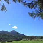 信州◆立科町/山を救え!鹿の食害をクラウドファンディングで【地域担当・ふるさと見聞録】