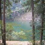和歌山◆北山村/自治体ごと飛び地の全国で唯一の村【物件こぼれ話】