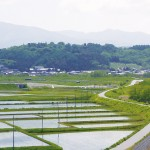 岩手◆遠野市/日本代表を育んだ空気と山河を宝として【地域担当・日々の業務より】