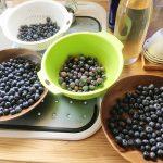 山梨◆北杜市/八ヶ岳南麓・身近な果物狩り【巡り巡って北杜市探訪記】