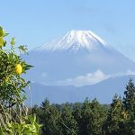 山梨◆八ヶ岳/季冬のみぎり・12月のお知らせ【八ヶ岳事務所・高根の里だより】