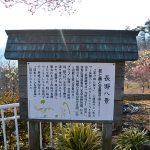 埼玉◆長瀞/宝登山・秩父花ごよみ【本部スタッフ・ふるさと見聞録】